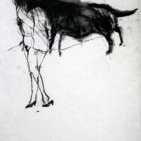 Hidas koira